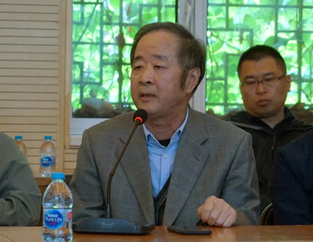 中国国家画院研究员王永亮发言