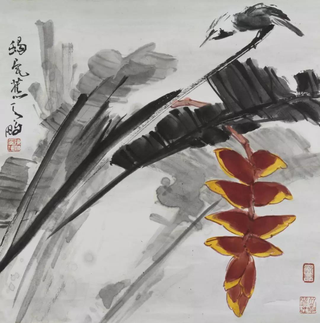 陈鹏   蝎尾蕉写生