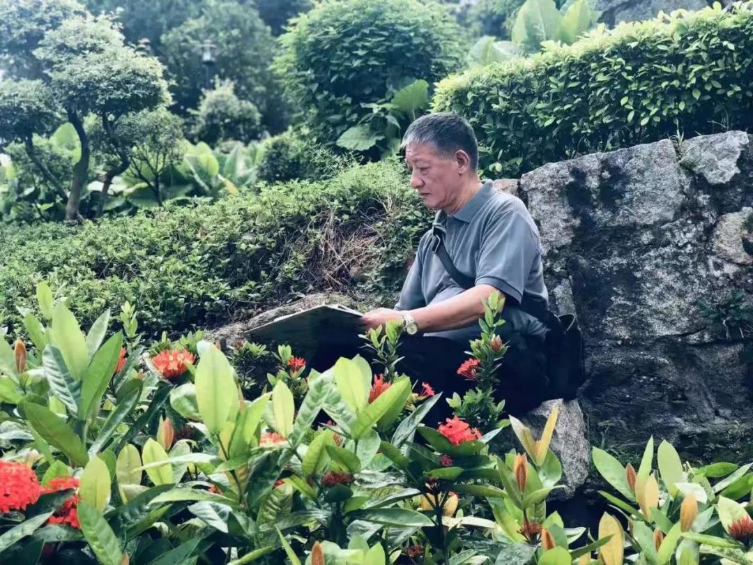 """香港美协顾问沈平老师的位置很""""独特"""",以至于记者无法攀爬上去记录写生点滴……"""